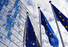 The Network of EU Independent Fiscal Institutions publishes a new edition of the European Fiscal Monitor