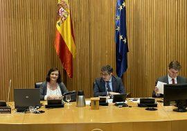 Cristina Herrero reclama una estrategia integral de salida que apoye la recuperación y asegure la sostenibilidad de las cuentas públicas