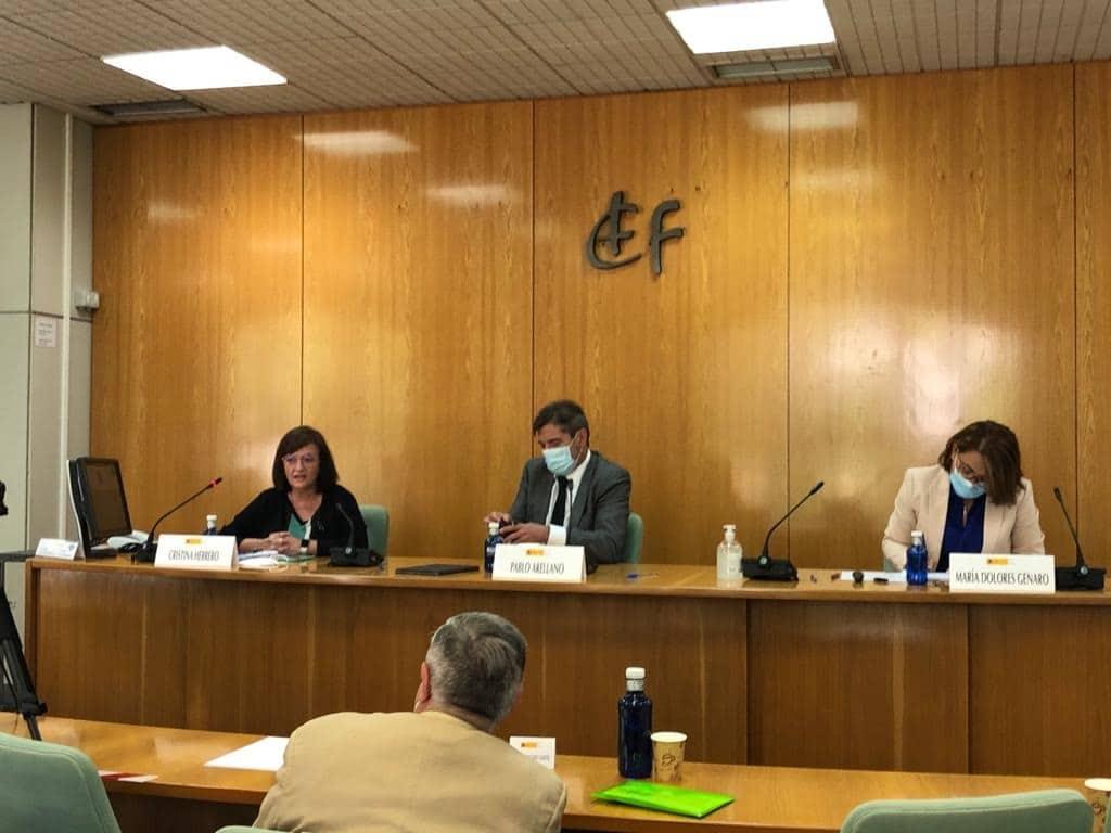 Cristina Herrero en un seminario del IEF
