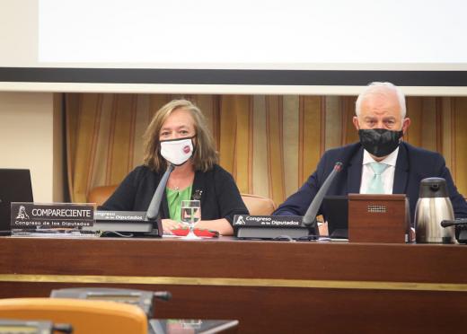 Cristina Herrero, presidenta de la AIReF, en la comisión de Hacienda del Congreso